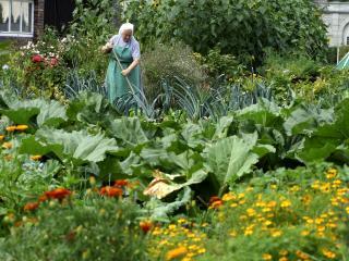 Wie-wir-leben_Garten-Galgana